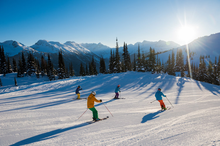 Perfect groomers with friends on a sunny day