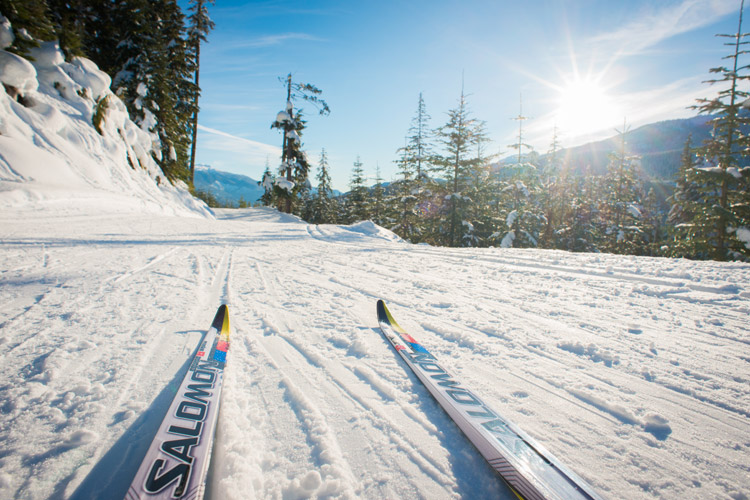 Tips of Nordic skis on tracks