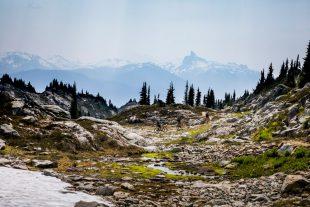 Biking in Whistler alpine
