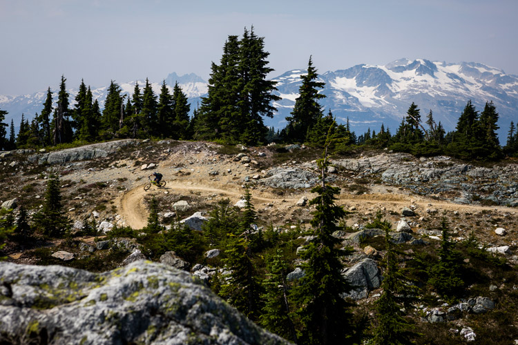 Biking Lord of the Squirrels in the Whistler alpine