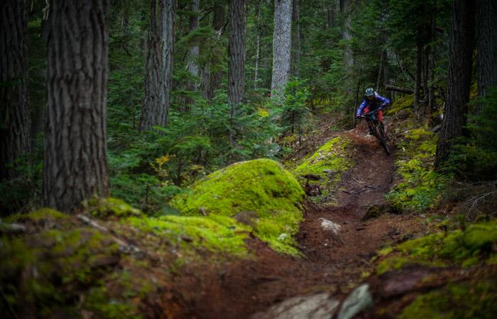 Mountain Biking Descent