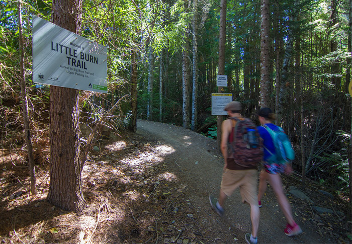 Blackcomb Ascent Trail Start