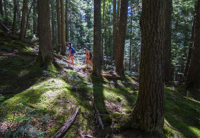 New Blackcomb Ascent Trail