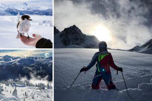 Celebrate Mountain Contest Photos