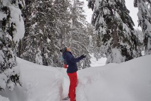 callaghan country whistler snowshoeing