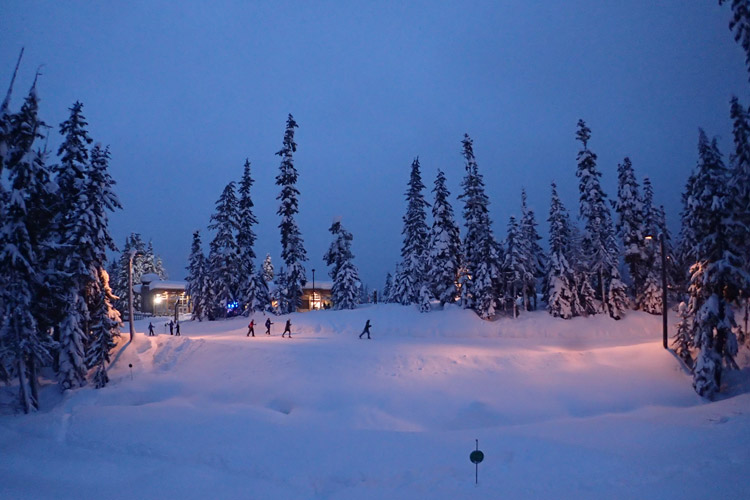 Nordic Skiing at Night in Whistler