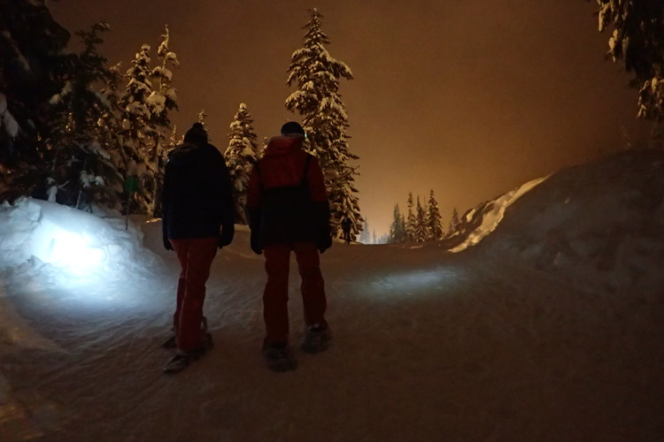 Snowshoeing at Night in Whistler