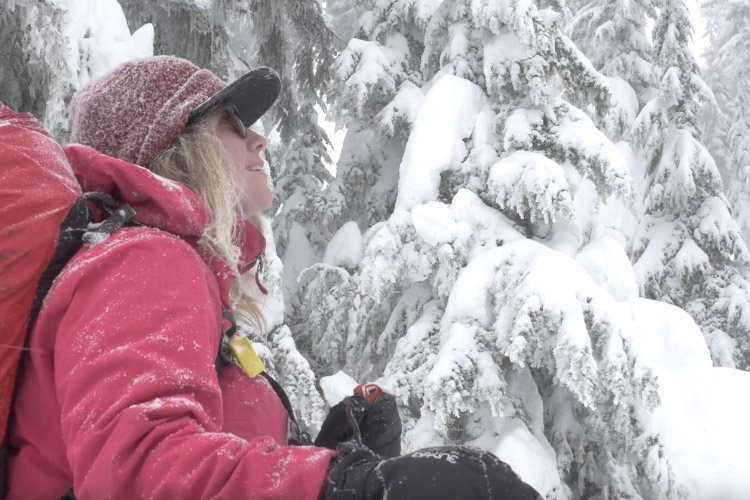 Artist Kate Zessel Backcountry Skiing