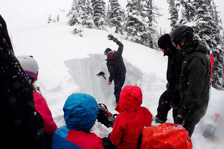 Testing the Snowpack