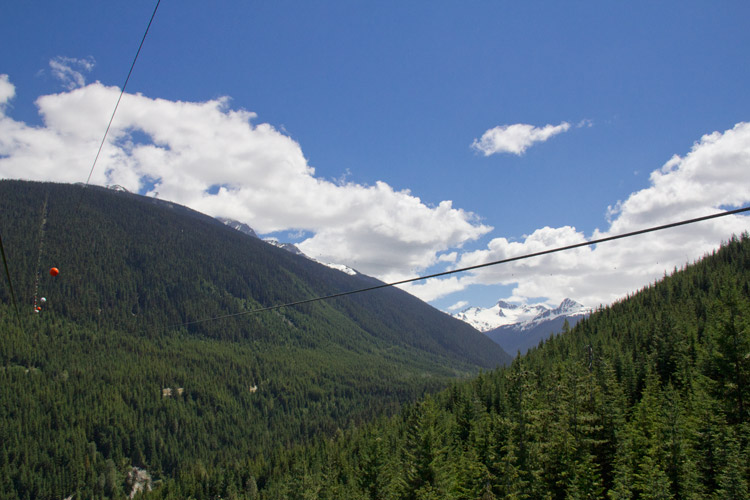 Length of The Sasquatch Zipline in Whistler