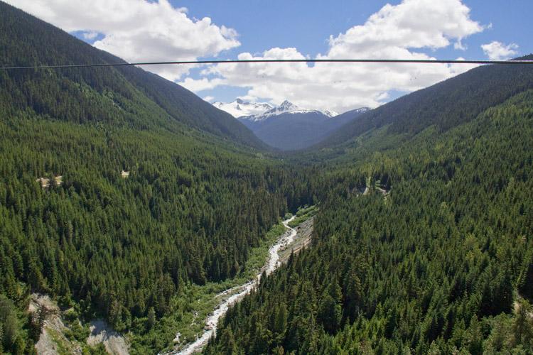 Views from the Sasquatch Zipline