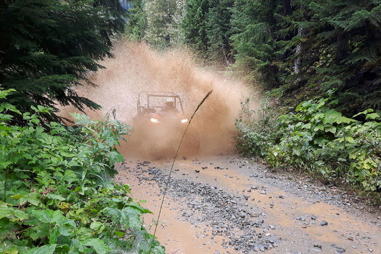 UTV Tour in Whistler in the Fall