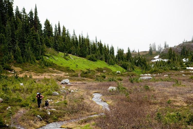 Hiking to Iceberg Lake in Whistler