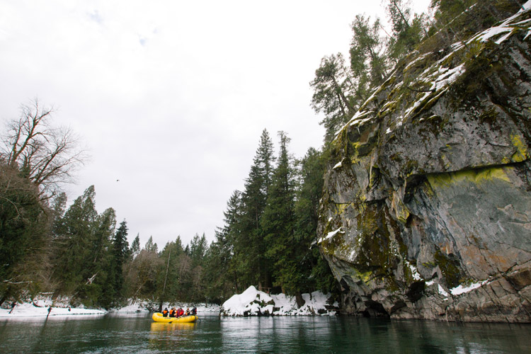 Squamish Rafting Company Winter Eagle Viewing Tour