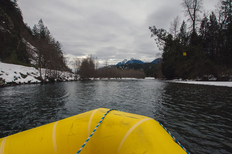 Winter Eagle Viewing Tour with Squamish Rafting Company