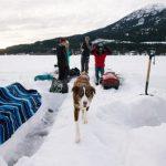 Winter Picnic in Whistler