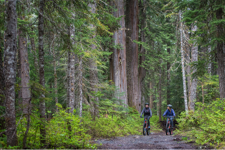 Whistler E-bike Mountainbike tours