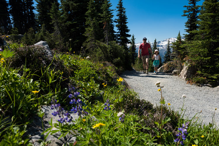 Hiking in the Whistler alpine