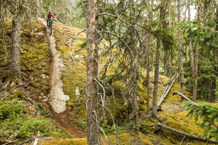 Rock Slab in Whistler North trails