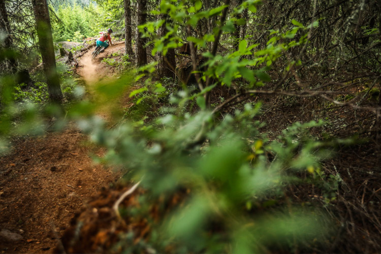Whistler Canada Mountain Bike Trail
