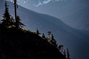 Whistler Bike Park Photo by photographer John Entwhistle