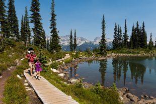 Family hiking on boardwalk around Harmony Lake on Whistler Mountain