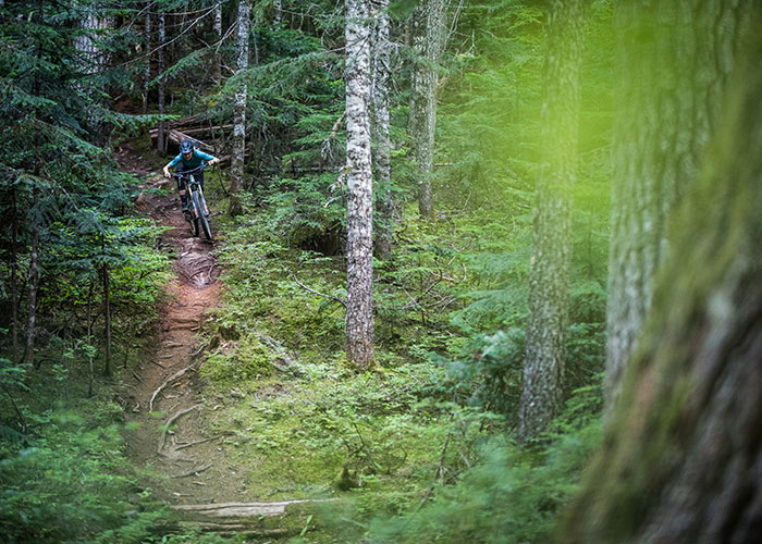 With roots, some flow, lengthy descents, and a forest that will take your breath away, what more could you want?
