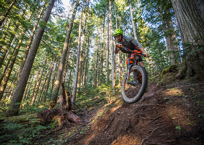 Find your own flow among the Blackcomb roots.
