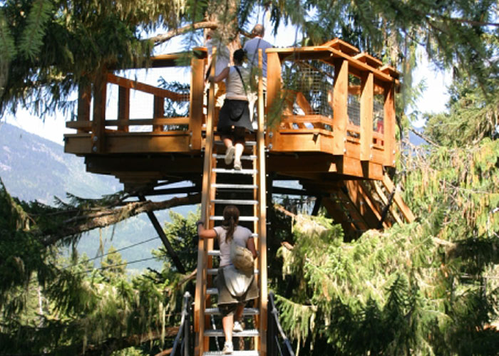 People climbing stairs to a treetop lookout