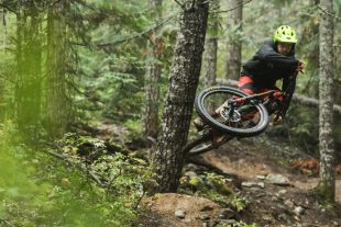 Mountain biking in Cheakamus