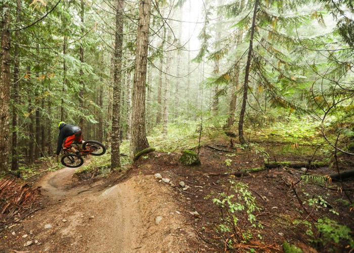 Mountain bike trails at Cheakamus