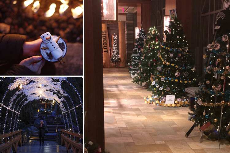 lobby photos four seasons whistler