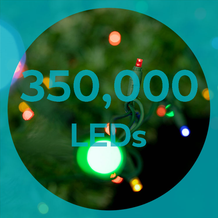 350,000 LED bulbs sparkle in the trees for Whistler festive season.