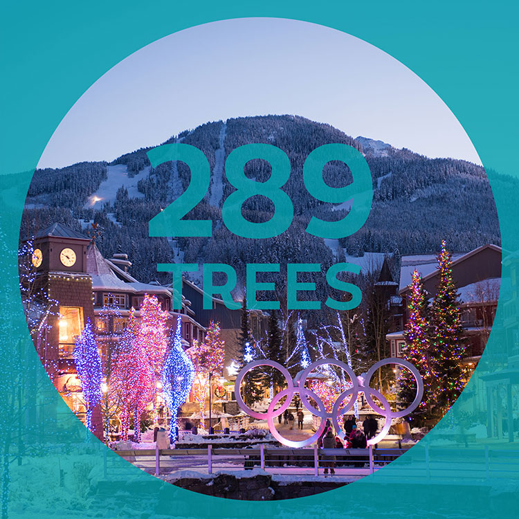 289 trees are decorated for Whistler's festive season.