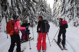 ski touring group stopping to talk
