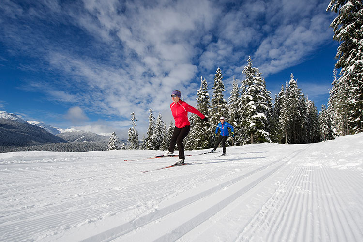 people cross country skiing on a blue sky day