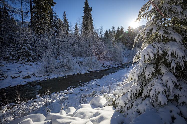 Fitzsimmons Creek in winter
