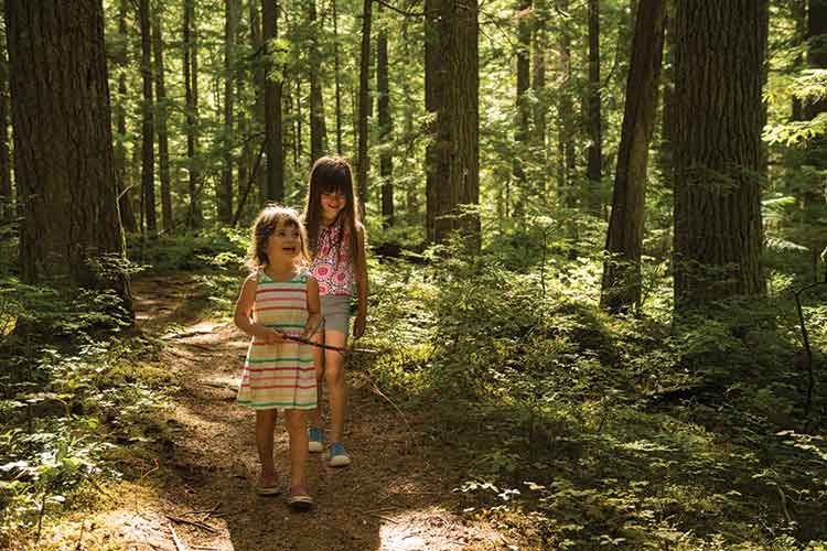 Kids walking on a Whistler hiking trail.