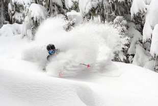 Skiing Powder in Whistler
