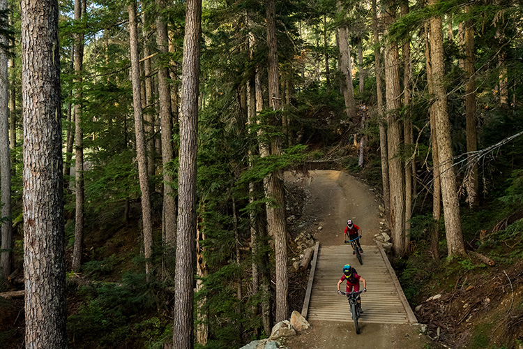 Whistler Mountain Bike Park for Beginners