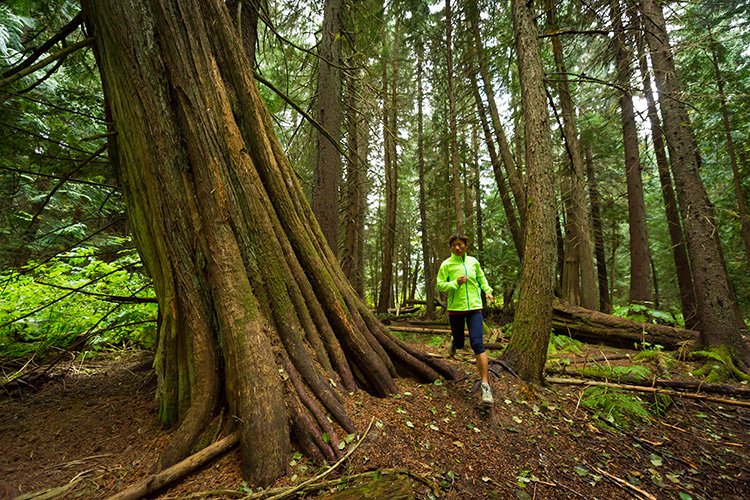 Woman trail running in Whistler