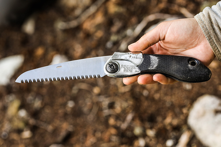 A hand saw for mountain bike trail maintenance