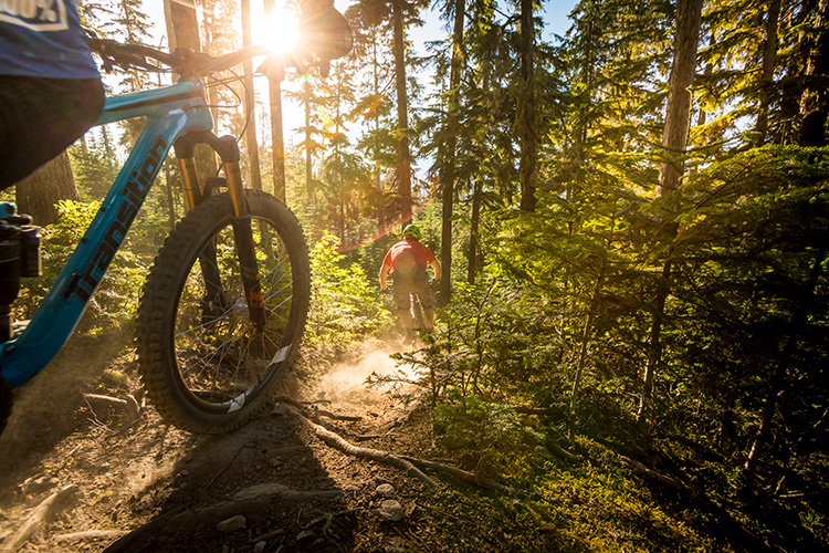 Mountain Bikers on a sunny trail in Whistler