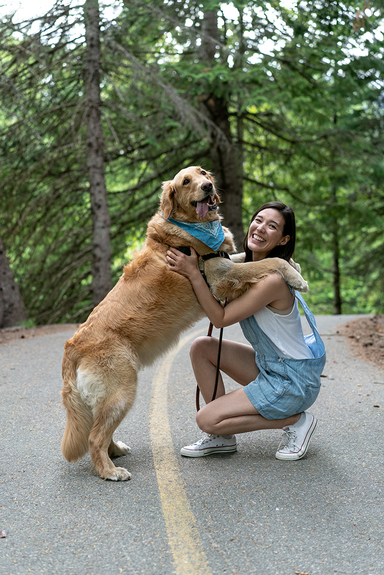 Dog giving person a hug on the Valley Trail in Whistler