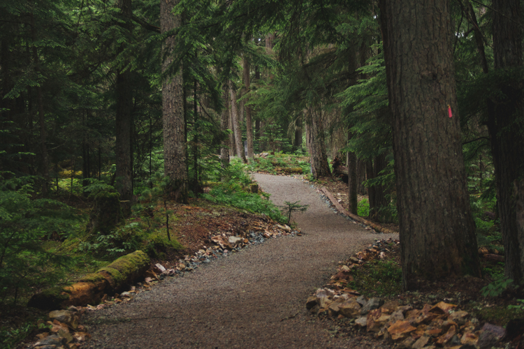 The Salish Stroll path in Whistler