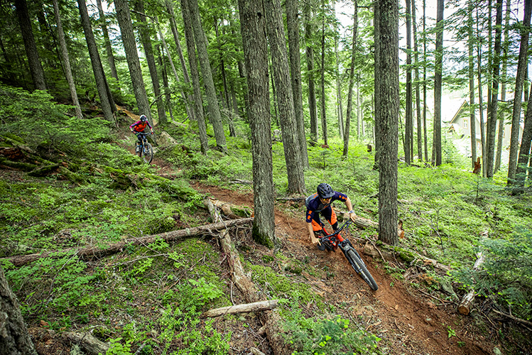 Two cross-country mountain bikers on a trail in Whistler