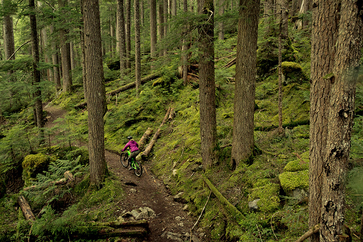 Cross-country mountain biker on a singletrack trail in Whistler