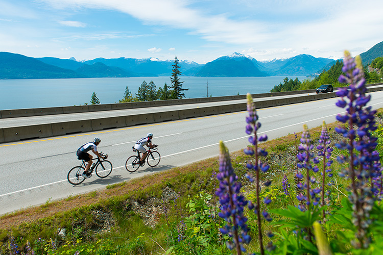 Road cyclists on the Sea to Sky Highway
