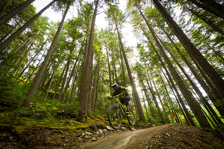 Biker getting air in the Whistler Mountain Bike Park