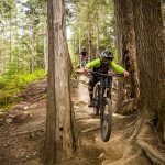 Riders on a technical trail in the Whistler Mountain Bike Park